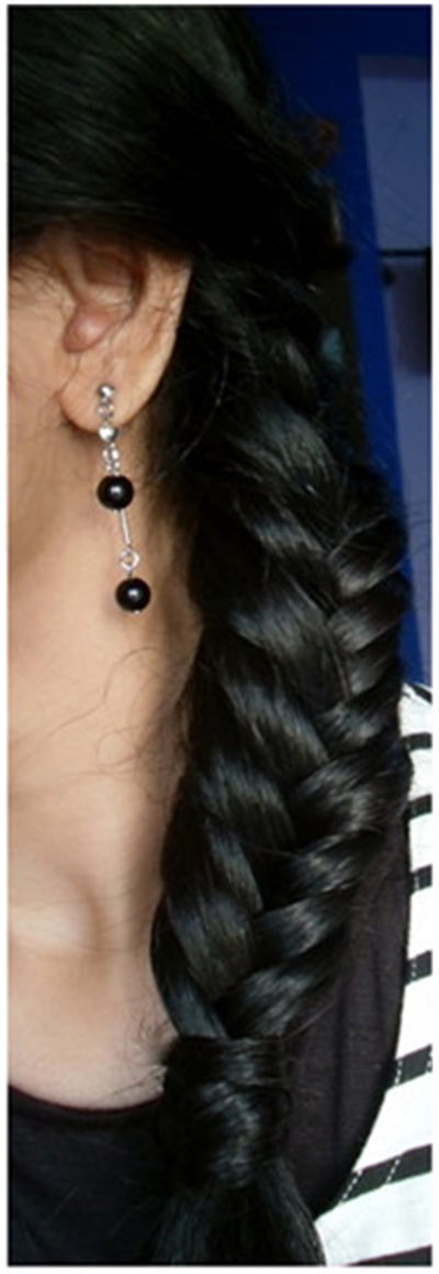 Entirely from heart: Indian Braid Hairstyles That You Can ...