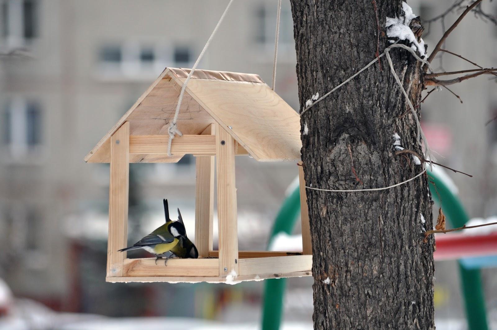 театр картинки птиц на кармушках спокойной ночи