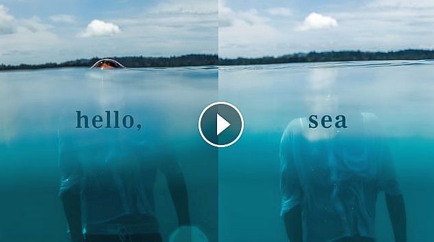 What Youth Hello Sea