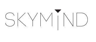 Large Scale Machine Learning and Other Animals: SkyMind: A