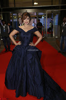 Payal Ghosh aka Harika in Dark Blue Deep Neck Sleeveless Gown at 64th Jio Filmfare Awards South 2017 ~  Exclusive 116.JPG