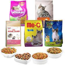 #6 – Makanan Kucing