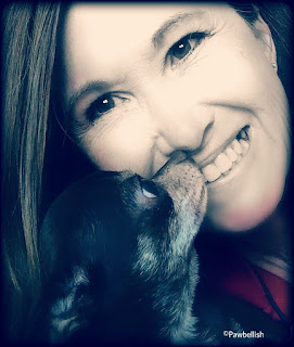 Owner and Designer of Pawbellish with her dog Tootsie the Chihuahua