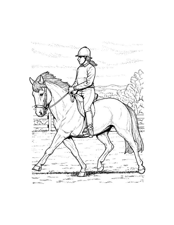 Coloring pages horse coloring pages free and printable for Coloring page of horse