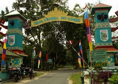 Pesona Wisata Way Kambas, Objek Tersembunyi di Ujung Pulau Sumatra