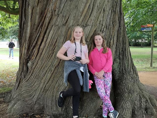 Tween girl twins