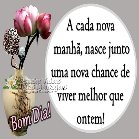 A cada nova manhã,  nasce junto uma nova  chance de viver melhor  que ontem!  Bom Dia!
