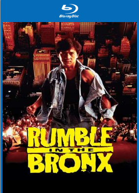 Rumble in the Bronx 1995 Hindi 200MB