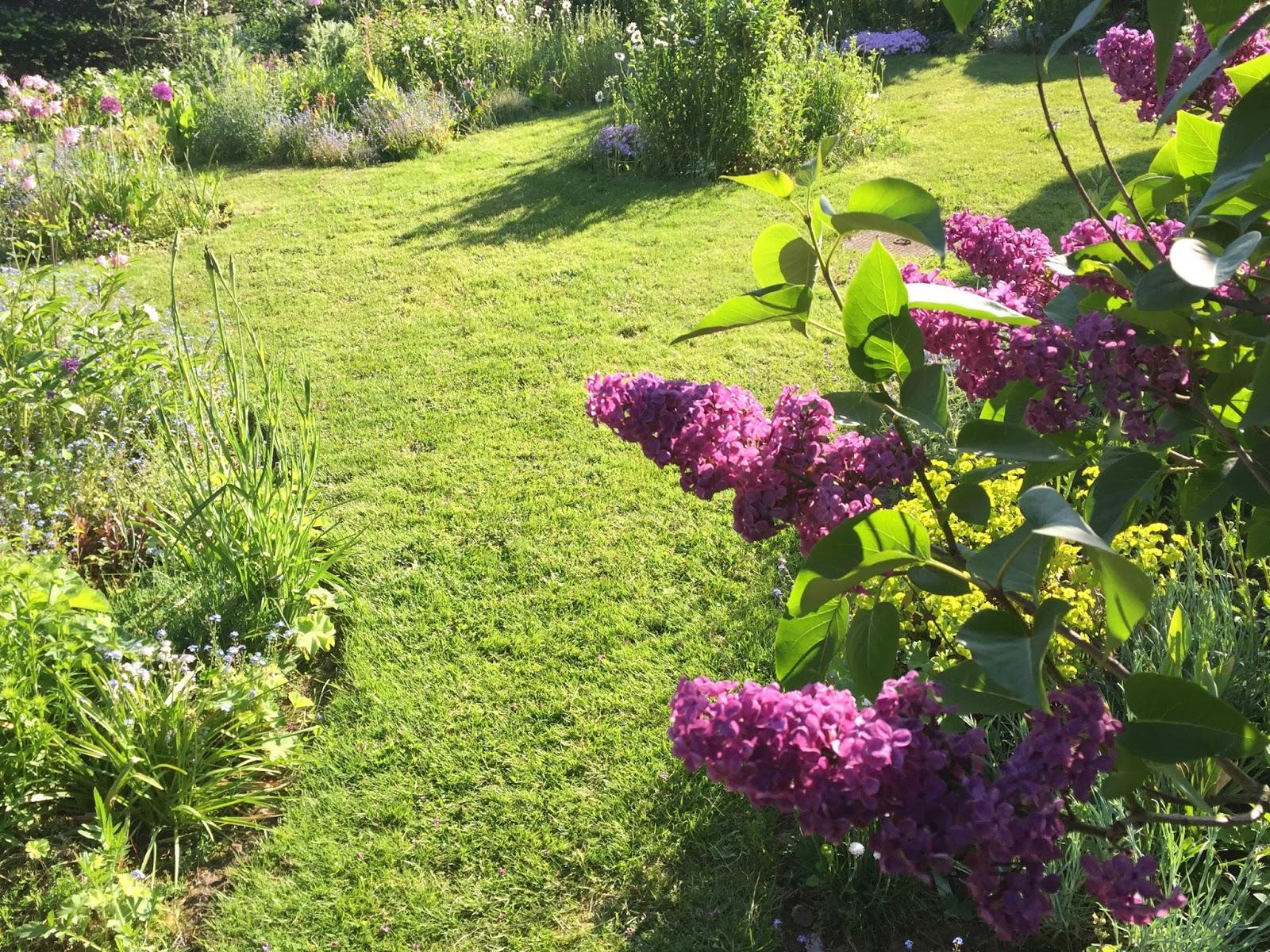 Der Garten Ende Mai Sunnys Haus