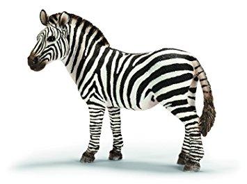 Zebra/ Păi da; e uşor de zis