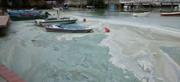 Σοκάρει η εικόνα της λίμνης στην Καστοριά: Το αποκρουστικό θέαμα που είδαν οι επιστήμονες (ρεπορτάζ – φωτογραφίες)