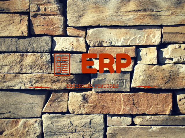 Absolutely essential ERP Features for successful business