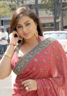 Namitha Gets Glamourous In Saree looks Blogspot Com 0004