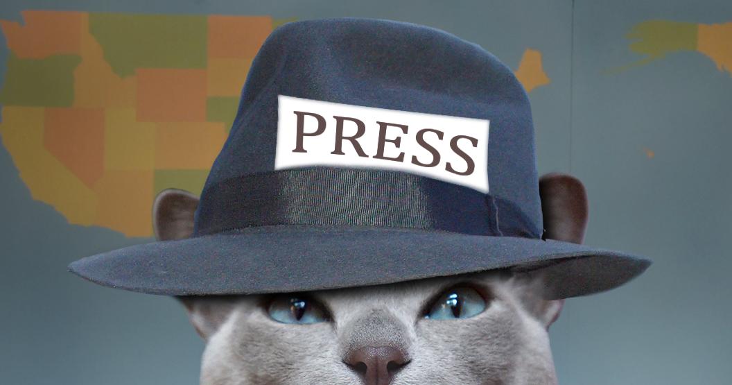 Картинки про журналистов смешные, красивые картинки