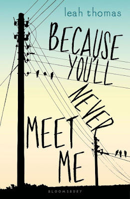 Because You'll Never Meet Me by Leah Thomas book cover