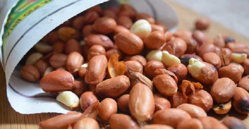 kacang bogares tegal