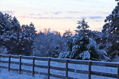 snow-covered countrysides are often beautiful