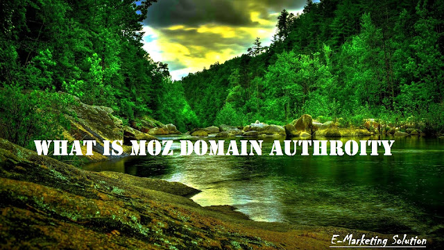 What is Moz Domain Authority