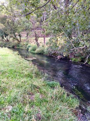 trout stream with habitat improvement