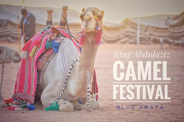 Photos: 12 camels disqualified from a beauty contest with $57 million grand prize in Saudi Arabia for using Botox