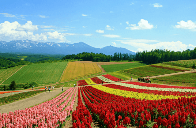The most beautiful places for tourism in Japan, magical