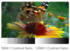 Máy chiếu BenQ W750 sự lựa chọn hoàn hảo cho công nghệ trình chiếu 2