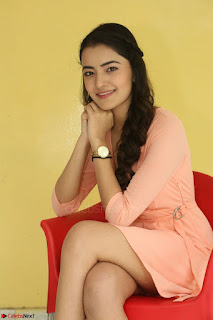 Rukshar Mir in a Peachy Deep Neck Short Dress 078.JPG