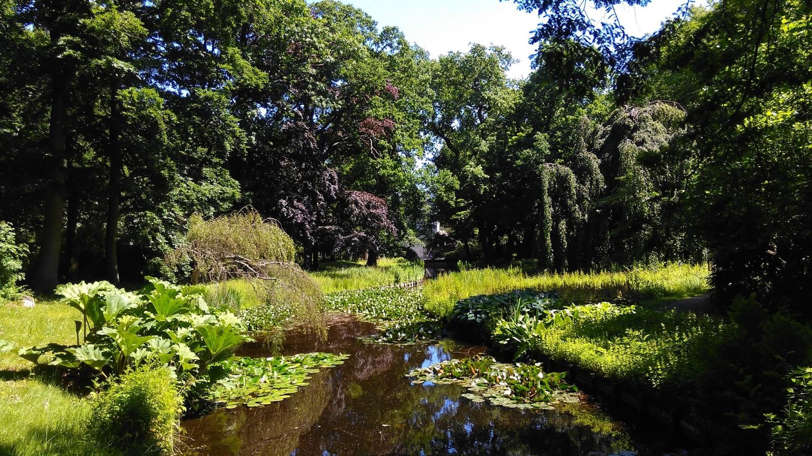 Engelse Landschapsstijl Tuin : Vrienden van te werve: herstel historische tuin en parkaanleg