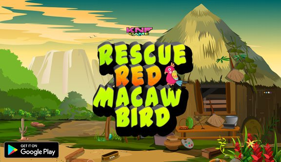 KnfGames Rescue Red Macaw…