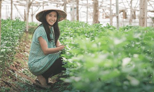 7 Jenis Peluang Usaha Cocok Untuk Kamu Yang Tinggal Di Pedesaan
