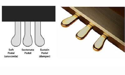 Pedal piano điện và cách sử dụng cho người mới chơi