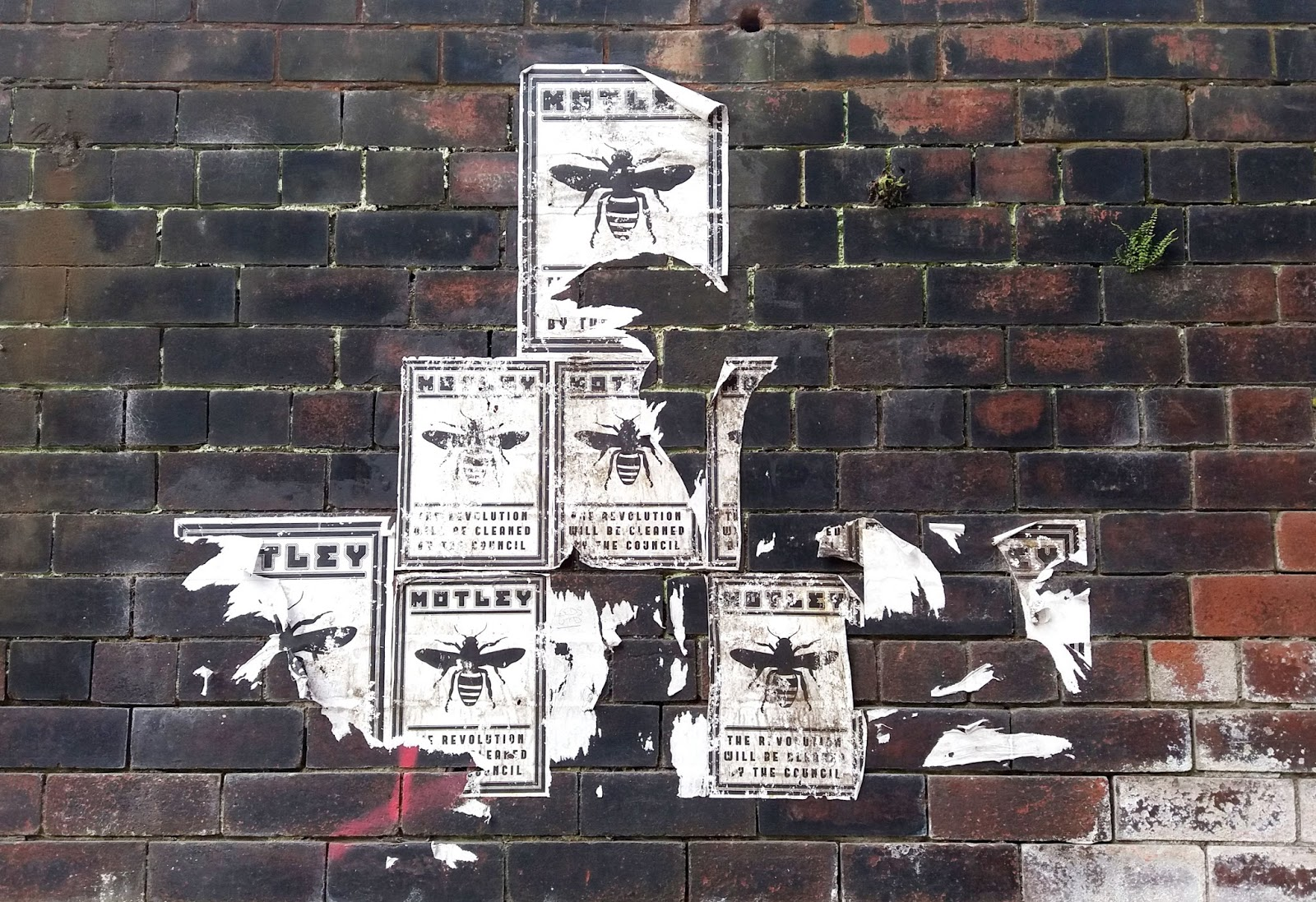 Ancoats Posters Bees