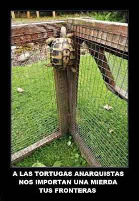 A las tortugas anarquistas nos importan una mierda tus fronteras