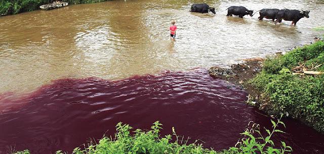 Polda Jabar Tutup Tiga Penatu Cemari Sungai Citarum