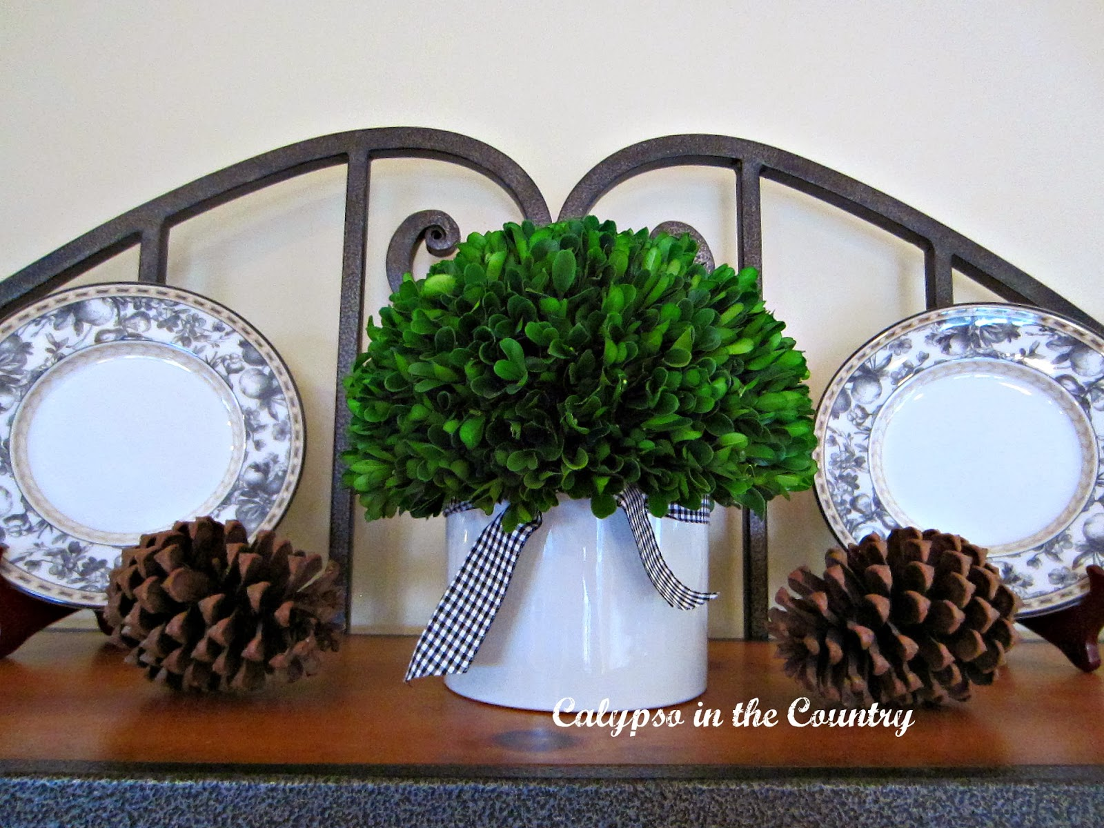 Preserved Boxwood from Homegoods