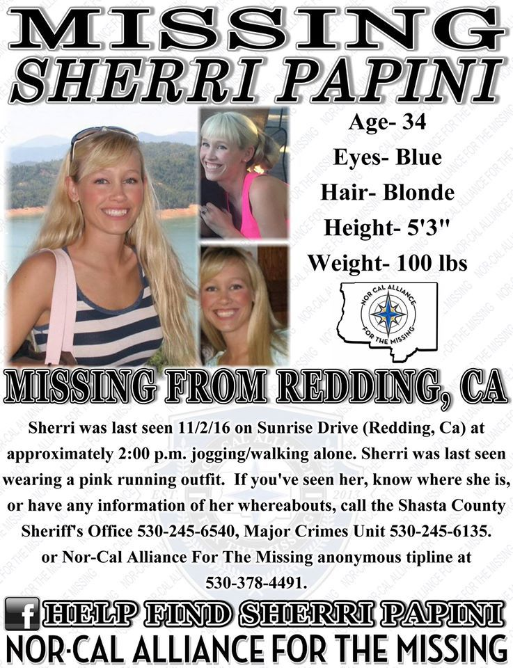 crime sherri papini missing californ
