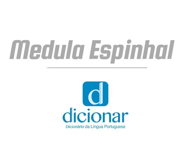 Medula Espinhal