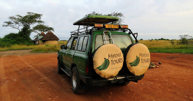 Matoke Tours safari vehicle in Uganda's Queen Elizabeth National Park