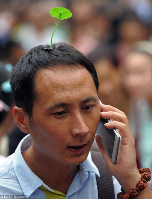 Man wearing grass hair pin while talking on phone