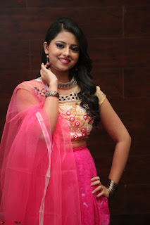 Geethanjali sizzles in Pink at Mixture Potlam Movie Audio Launch 018.JPG