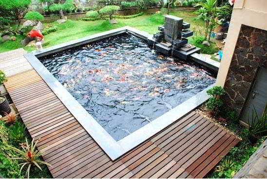 Foto Desain Taman dan Kolam Ikan Minimalis Cantik