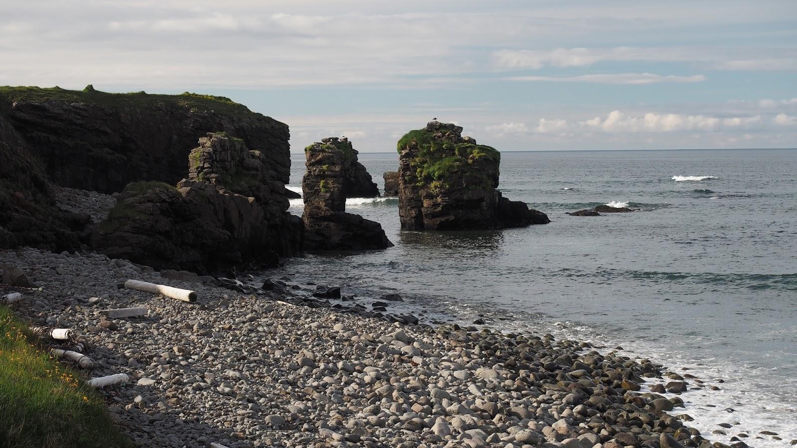 Hornstrandir, trekking Islandia, atrakcje Islandii