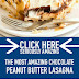 The Most Amazing Chocolate Peanut Butter Lasagna