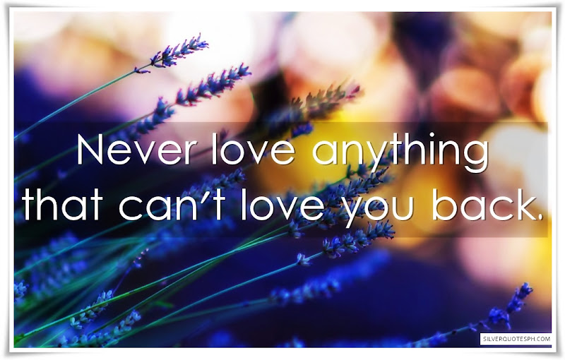Never Love Anything That Can't Love You Back
