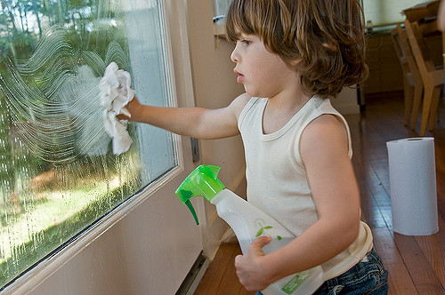 Window Cleaner Solution Description and Advice