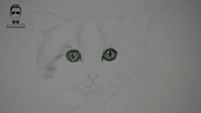 تعلم رسم بسة