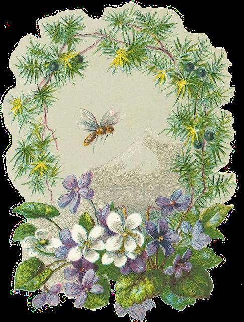 http://2.bp.blogspot.com/-qyM00Kvv3BY/T1jd6huwBoI/AAAAAAAACt8/ZivYSUNl7xk/s1600/Violet-Bee-Leaping-Frog-Des.png