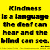 Kindness is a language the deaf can hear and the blind can see. ~Mark Twain