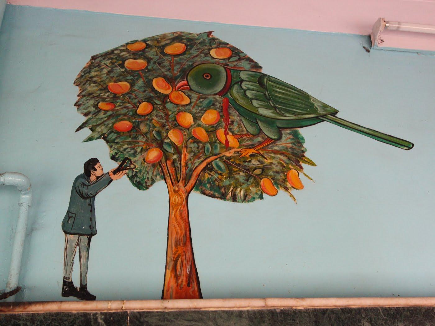 Hello Talalay Charity Birds Hospital Delhi
