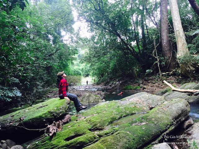 Con đường trekking đến suối Lưu Ly, rừng Bù Gia Mập